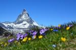 Scopri le Dolomiti nella stagione estiva